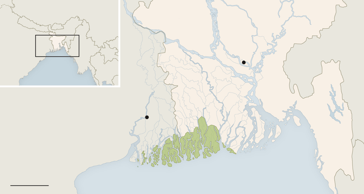 Map of the Sundarbans, part of the Ganges River Delta, where Cholera first emerged. Source: World Wildlife Fund